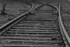 Buchenwald - tracks