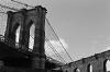 Tobacco Warehouse - windows and Brooklyn Bridge